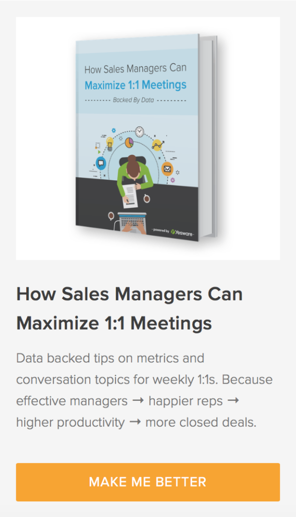 sales manager 1:1 ebook